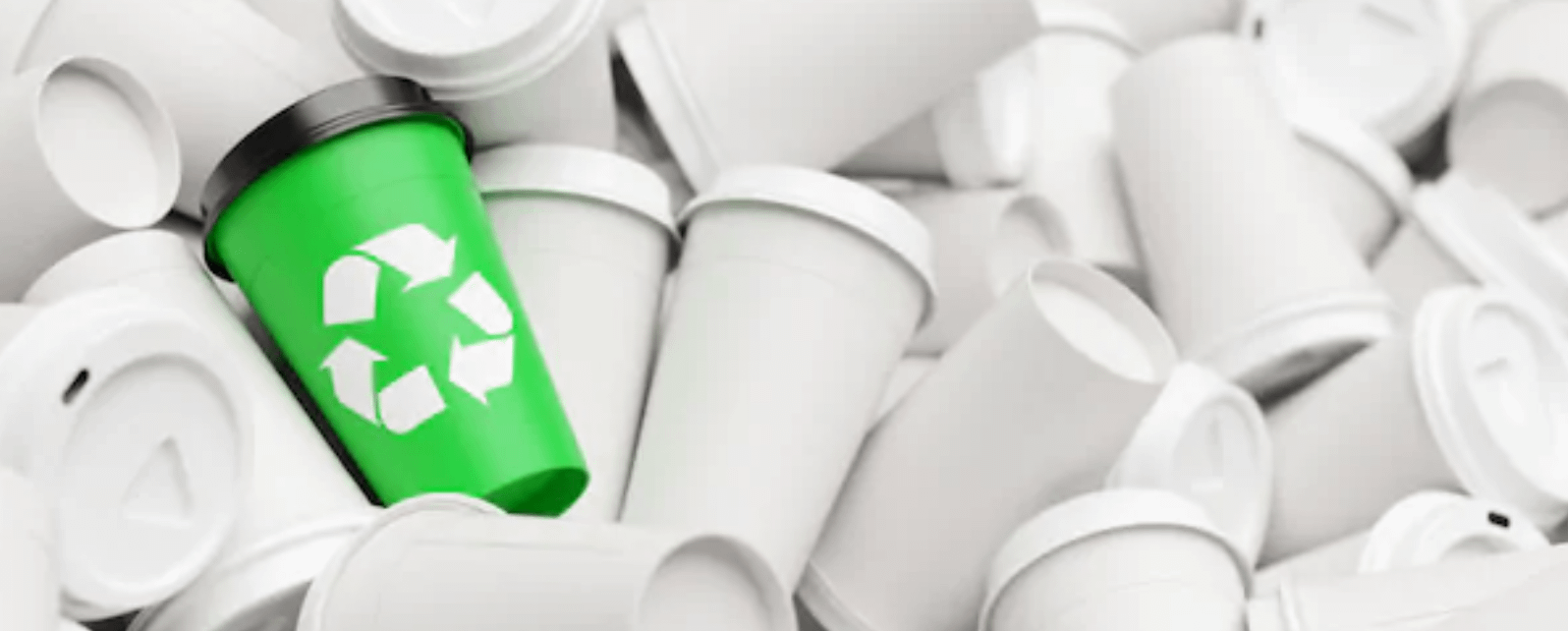 Recyclable Paper Cups